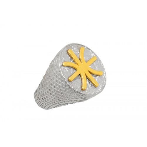 Δαχτυλίδι οβάλ σε κίτρινο και λευκό χρώμα με το σήμα των Έψιλων
